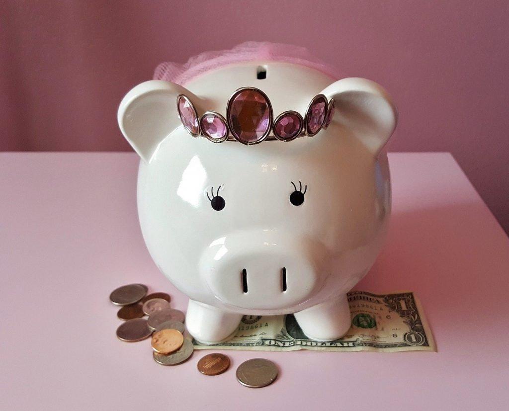 piggy bank, pig, piggy